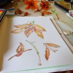 Watercolor Orange Lilies