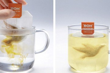 BOH_TeaBag_COVER_1400x700