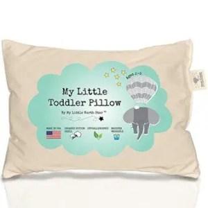Cheap Organic toddler pillow under $20