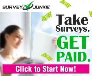 Oline survey jobs