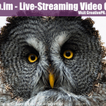 Blab.im – Live-Streaming Video Chat [COOL TOOL]