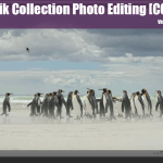 Google Nik Collection Photo Editing Software [COOL TOOL]
