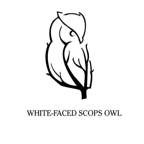 7993e6f38423bb973f936fb2e68caf45 35 Owl Logo designs For Your Inspiration