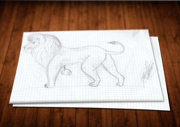 Lion Drawings Illustration
