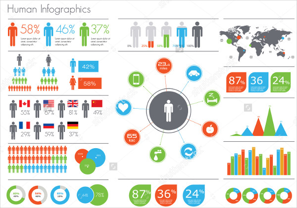 Human Infographic Vector Template