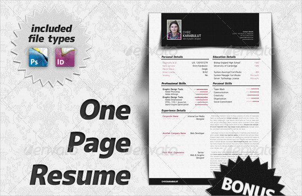 Minimalist One Page Resume Template