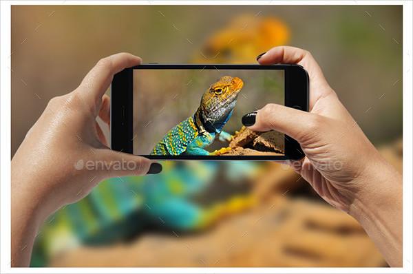 Phone Responsive Screen Mock-Ups
