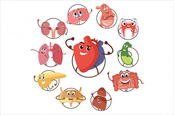 Funny Icons of Organs