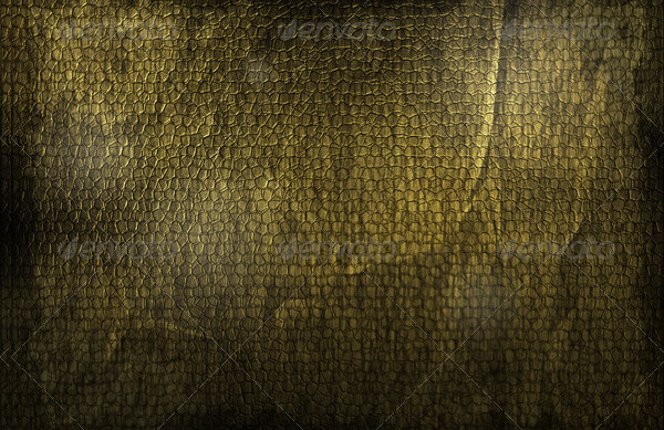 Grunge Leather Background