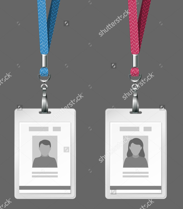 Vector Identification Cards Download
