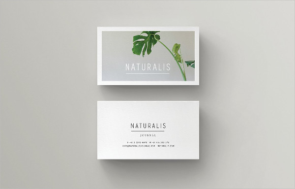 Minimal Global Business Card Template