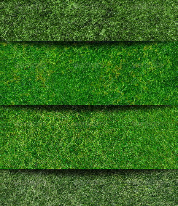 7 High Quality Grass Background Textures