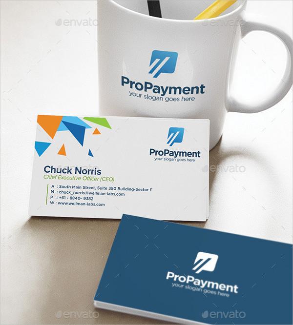 Pro Payment Logo Design