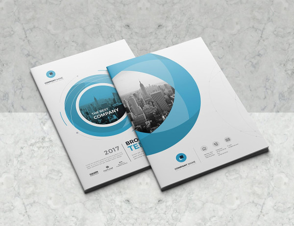 Company Informational Brochure 16 Pages