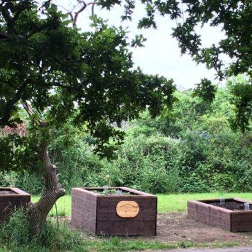 The Rookery Community Garden