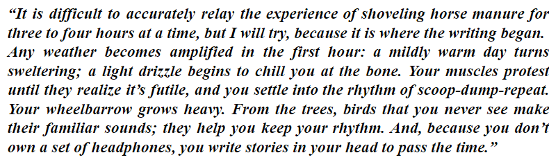 examples statement of purpose grad school essay MFA Creative writing
