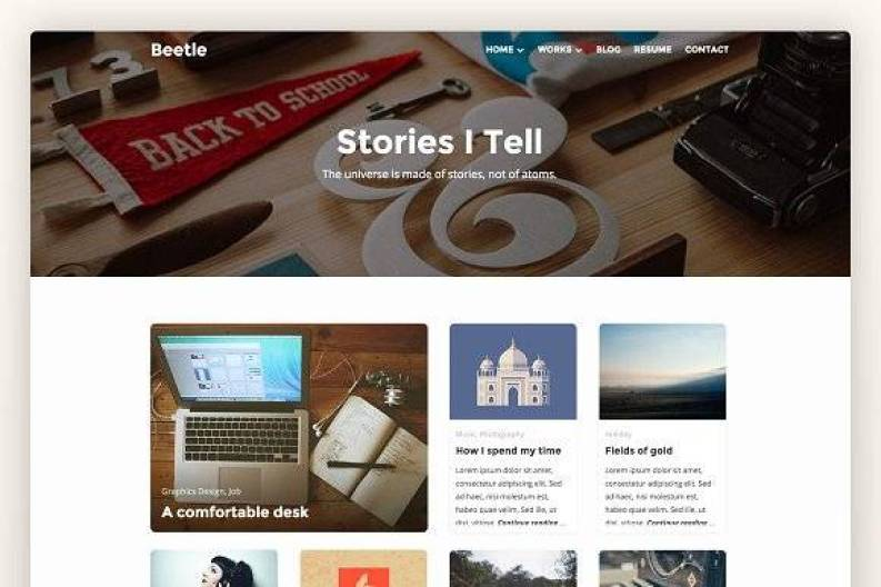 Beetle Pro wordpress themes
