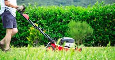 best lawn mower for small lawn