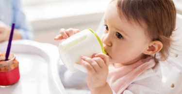 Best Sippy Cup Reviews
