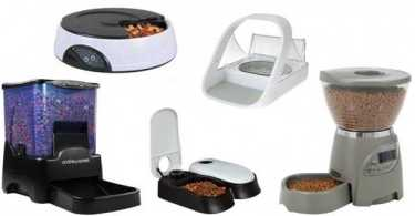 Best Automatic Pet Feeders Reviews