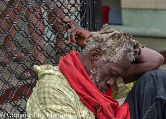 Tagschläfer Grenada Karibik