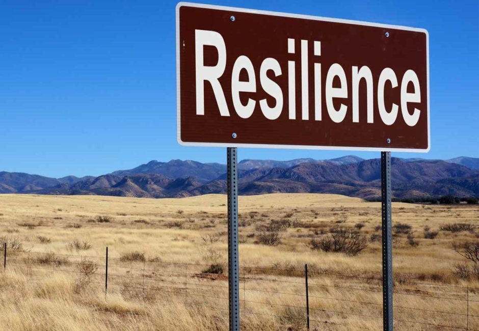 Health, resilience and well-being