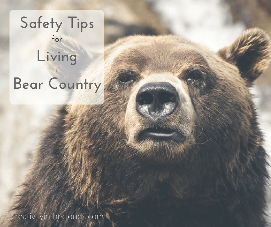 Important Safety Tips for Living in Bear Country