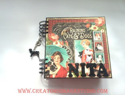 Raining Cats And Dogs Creators Image Studio