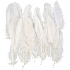 plumes acheter plume loisirs creatifs