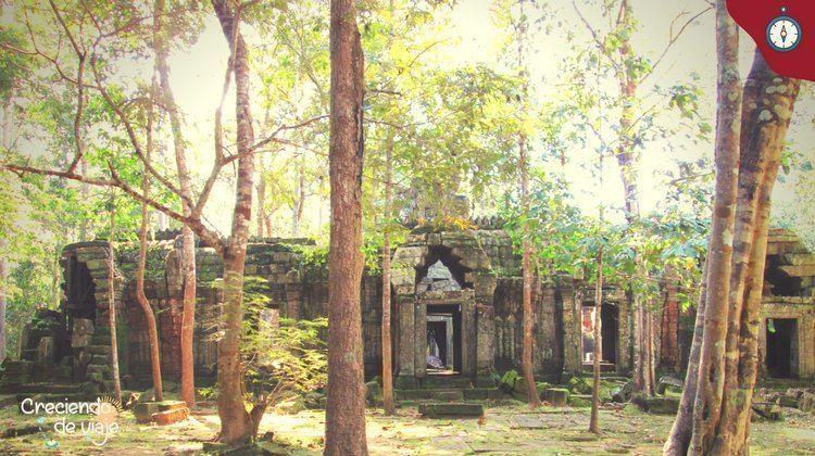 ta nei templos de angkor