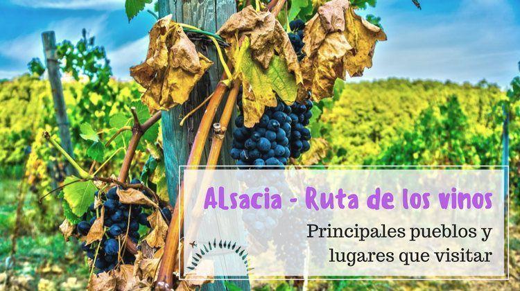 ruta de los vinos alsacia