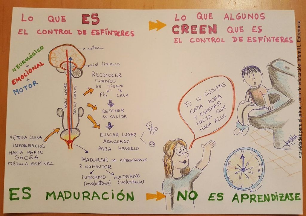 control esfínteres_laura estremera