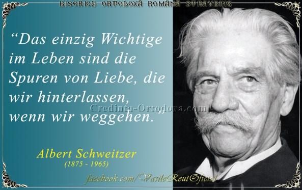 Albert Schweitzer - das einzig wichtige im Leben