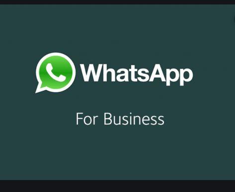 whatsapp-business-downlaod