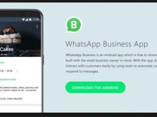 WhatsApp Business Web