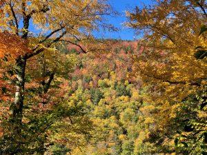 A Three Day Vermont Fall Foliage Itinerary