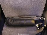 Air Canada Business Class Seat Belt