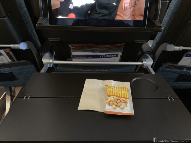 Cathay Pacific Economy Traytable