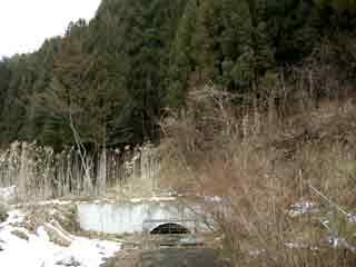 sinasakayamaguti3