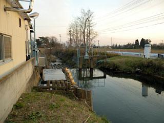 jouyachinai8.jpg