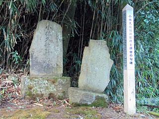 kobayashi24