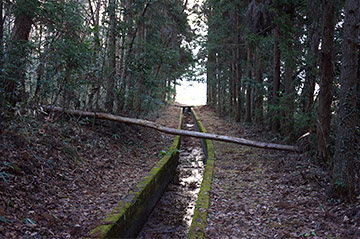 shinasakatoyonaga26