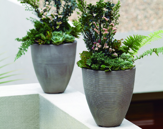 Tall Planter Ideas