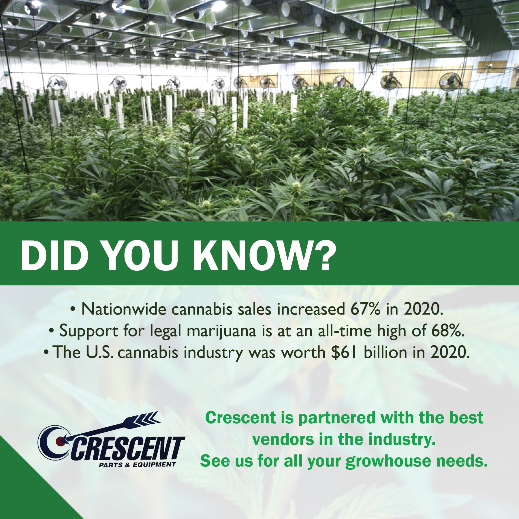did you know cannabis piece