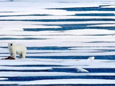 Τι παίζει με το λιώσιμο των πάγων
