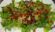 Σαλάτες με ωμά άγρια χόρτα