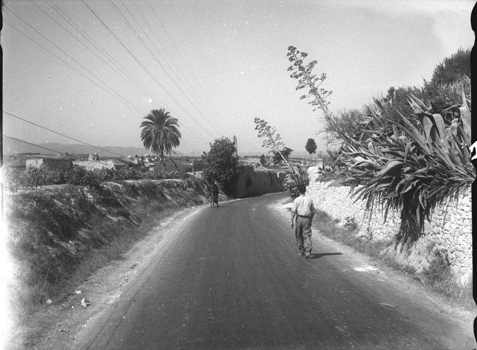 Κρήτη 1941. Ο δρόμος από την Κνωσό πρός το Ηράκλειο