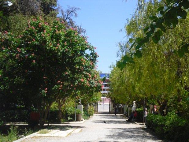 Ο ξεχωριστός Δημοτικός Κήπος του Ρεθύμνου
