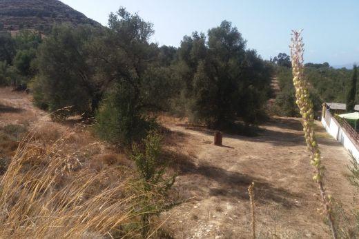 Building plot in Kamilari village