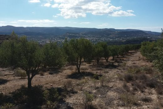 Building plot in Kamilari with panoramic view